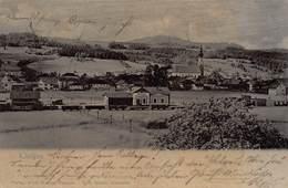 GRUSS Aus THALGAU AUSTRIA ~ PANORAMA-BAHNHOF-RAILROAD STATION ~ 1904 PHOTO POSTCARD 42484 - Thalgau