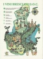 Eventi - Manifestazioni - Verona 1991 - 25° Vinitaly - 4° Distilla - I Vini Bresciani D:O.C.- - Manifestazioni