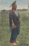 Native American, Medicine Crow Medicine Man C1900s Vintage 'Indian Mailing Card' By Wanamaker - Indiens De L'Amerique Du Nord