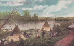 Umatilla Tribe Native American Indian Camp In Oregon, C1900s Vintage Postcard - Indiens De L'Amerique Du Nord