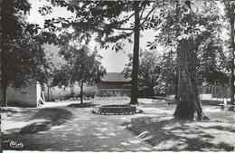 CPSM 65 - Rabastens De Bigorre Le Jardin Public Voir Dos Correspondance De Ségalas 1954 - Rabastens De Bigorre