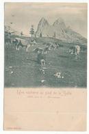 CPA 9 X 14 Hautes Alpes Une Vacherie Au Pied De La Selle Alt. 2722m Bramousse  Alpage Berger Vache Carte Précurseur - Non Classificati