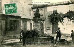 SAULT =  Place De La Fontaine   1383 - Autres Communes
