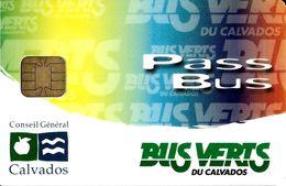 CARTE A PUCE CHIP CARD TRANSPORT AUTOBUS  BUS VERTS DU CALVADOS PASS BUS - Autres