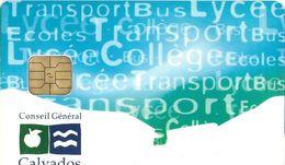 CARTE A PUCE CHIP CARD TRANSPORT AUTOBUS  TRANSPORT  ABONNEMENT CONSEIL GÉNÉRAL DU CALVADOS 14 - Autres
