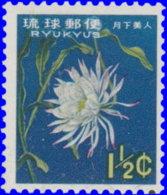 Ryu-Kyu 1962. ~  YT 94** - Gooseneck Cactus - Altri - Asia