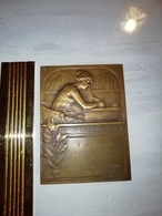 "11617    PLAQUE SIGNEE H.KAUTSCH "" IN LABORE QUIES IMPS"" LA SEYNE 1936 DECERNEE A MLLE AVALLONE ANNE - Autres Collections"