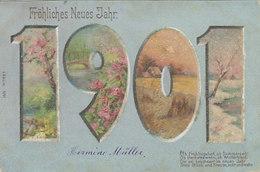 """1901 Mit Strass Bedeckt - UPU-Frankatur Mit Stabstempel """"Botsberg (Flawil)"""" - 1900          (00205) - Año Nuevo"""
