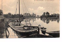 CPA Le Lion D'Angers Les Bords Del'Oudon (Maine Et Loire) - France