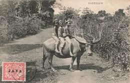 Indonesie Karbouw Buffle Avec Enfants Cpa Carte Voyagée + Timbre Surchargé Java 1909 Nederlandsch Indie Ned - Indonésie