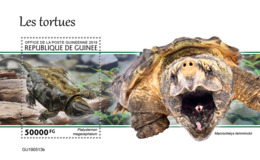 Guinee 2019 Turtles Fauna Turtle S/S GU190513 - Stamps