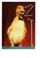 Cpm -  SATURNIN Speaker Par Jean Tourane - N°50 Yvon - Micro Canard Nœud Papillon - Cómics