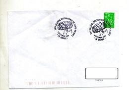 Lettre Cachet Dieppe Festival Cerf Volant - Storia Postale
