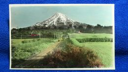 Mt. Egmont Teed's New Plymouth New Zealand - Nuova Zelanda