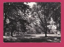 60 - NOGENT SUR OISE - Le Parc De L'Hôtel De Ville - Nogent Sur Oise