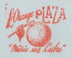 Meter Cover Belgium 1961 Orange - Frutta