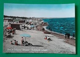 Cartolina Lido Di Pomposa ( Ferrara ) - Incantevole Spiaggia - 1960 Ca. - Ferrara