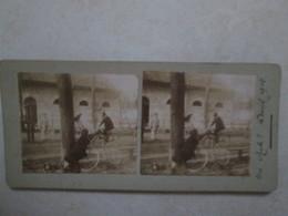 Une Chute Avril 1912 - Photos Stéréoscopiques