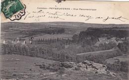 19. PEYRLEVADE. CPA . VUE PANORAMIQUE. ANNEE 1909 + TEXTE - Autres Communes