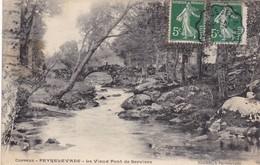19. PEYRLEVADE. CPA . LE VIEUX PONT DE SERVIERE. ANNEE 1908 + TEXTE - Autres Communes