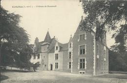 Cellettes  Chateau De Bousseuil - Autres Communes