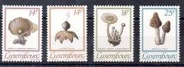 Luxemburgo Serie Completa N ºYvert 1217/20 ** SETAS (MUSHROOM) - Luxemburgo
