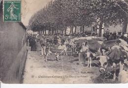 [45] Loiret > Chatillon Coligny Le Champs De Foire Vente De Bestiaux - Chatillon Coligny
