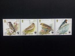 ISLE OF MAN MI-NR. 860-863 POSTFRISCH(MINT) WWF NATURSCHUTZ 2000 SINGVÖGEL LERCHE GOLDAMMER SCHWALBE - Isle Of Man