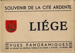 Vue Panoramique De Liège Du Haut Du Mémorial De Cointe En 8 Vues - Liege