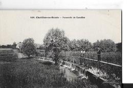 CHATILLON EN BAZOIS   N 1490   PASSERELLE DE CUEUILLON    PERSONNAGES    DEPT 58 - Chatillon En Bazois