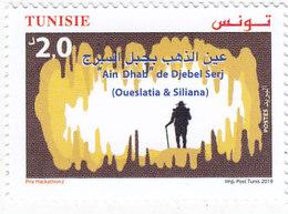 Tunisia New Issue 2019,Ain Dhab 1v,complete Set MNH - ( No Paypal & No Skrill ) - Tunisia