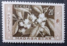 France (ex-colonies & Protectorats) > Madagascar  > 1940-1960 N° 331 Neufs - Neufs