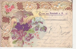 Neustadt/Haardt Litho Blumen Prägekarte Gl1902 #93.302 - Non Classés