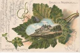 Neustadt/Haardt Litho Schloss Prägekarte Gl1902 #93.296 - Non Classés