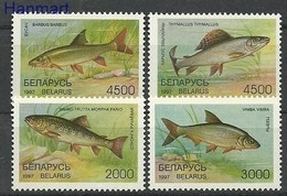 Belarus 1997 Mi 217-220 MNH ( ZE4 BYL217-220 ) - Peces