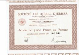 TUNISIE-DJEBEL-DJERISSA. STE DU ... PARIS - Shareholdings