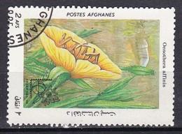 Afganistan, 1985 - 2af Oenothera Affinis - Nr.1146 Usato° - Afghanistan