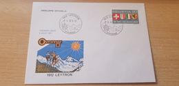 Marcophilie Suisse Oblitération 1912 Leytron 05.08.1971 Ski Flags - Suisse