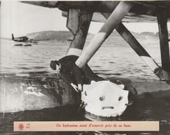 Photographie Agence Rvd.hydravion Vient D'amerrir Pres De Sa Base - 1939-45