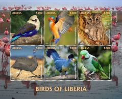 LIBERIA 2020 - Birds Of Liberia, Turaco. Official Issue [LIB200107a] - Cuco, Cuclillos