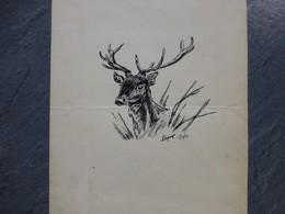Tête De Cerf, Encre De Chine Signée, 1942 ; GR01 - Dessins