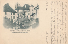 CHATILLON DE MICHAILLE - CHATEAU CALLET RAVINET - Autres Communes