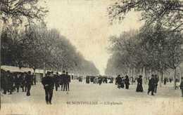 MONTPELLIER  L'Esplanade RV - Montpellier