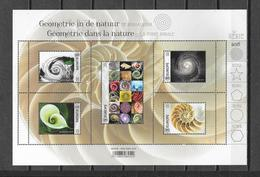 "België 2018 Velletje "" Giometrie In De Natuur "" (**) - Unused Stamps"