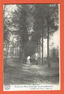 238 P3 - Ypres-Heuvelland-Kemmel N°10 Avenue Du Mont Jusqu'au Belvédère - Belgique Historique - Desaix - Ieper