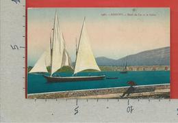 CARTOLINA VG SVIZZERA - GENEVE - Bords Du Lac Et La Saleve - 9 X 14 - 1904 LE SCHNAPS RUINE LA FAMILLE ET LA RACE - GE Geneva