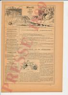 2 Scans Humour Pêche à La Ligne Conseils Sur Les Ecrevisses Dame Perruche Oiseau Thème Oisellerie 226CH26 - Old Paper