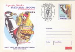 84966- MUSHROOM, GREAT SPOTTED WOODPECKER, BIRDS, COVER STATIONERY, 2004, ROMANIA - Specht- & Bartvögel