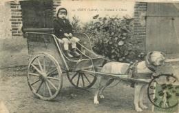 45 Gien, Voiture à Chien, Gros Plan, Affranchie 1919 - Gien