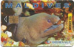 Maldives - Dhiraagu (chip) - Morey Eel - 61MLDGIB - Chip Siemens S30, 50MRf, Used - Maldiven